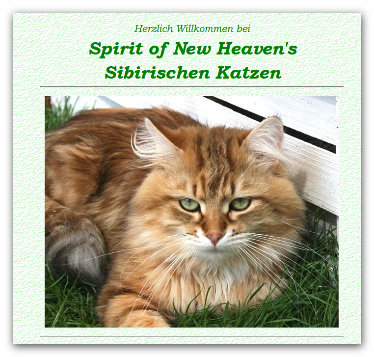 Spirit_New_Heaven-s